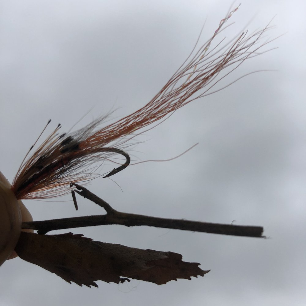 Is your fly just another piece of debris or something to intrigue the fish?
