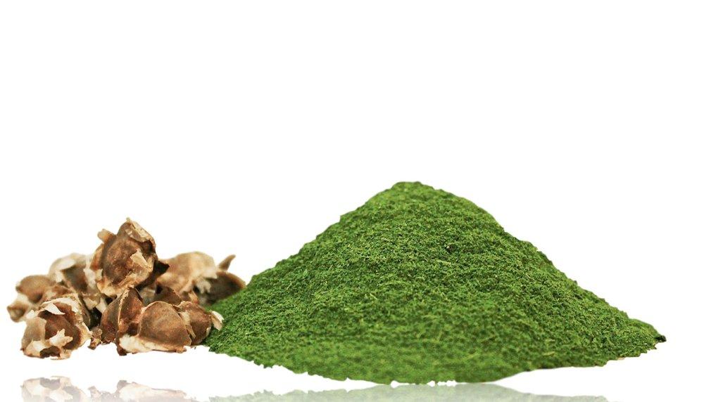 moringa powder and seeds_clipped_rev_2.jpeg