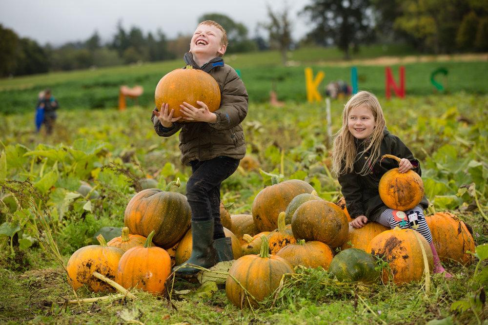 Pumpkin Press 5.jpg