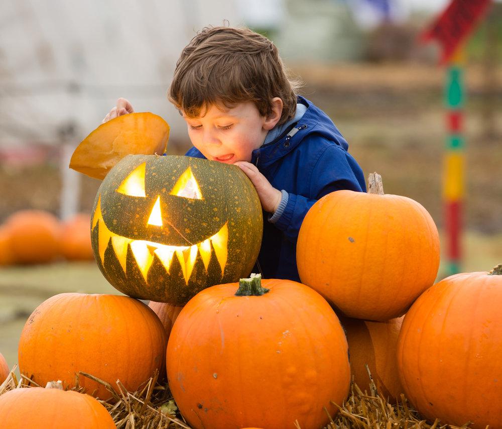 Pumpkin Press 2.jpg