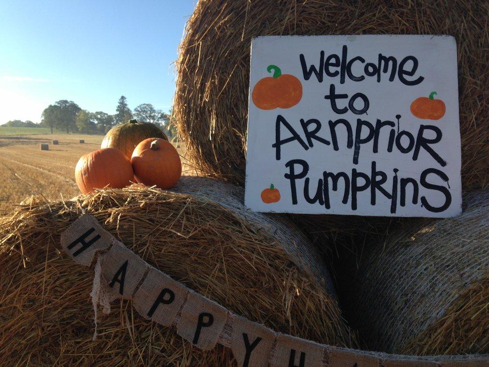 Arnprior Pumpkins 2