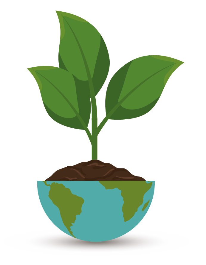 plant-01.png