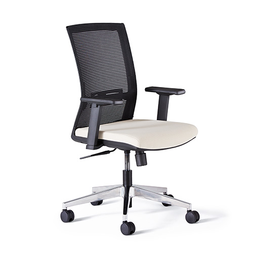Neutral Posture Renati Task Chair   $284