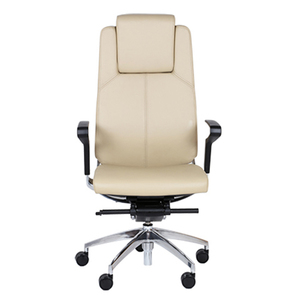 9to5 Cosmo Leather High Back Executive Chair   $695