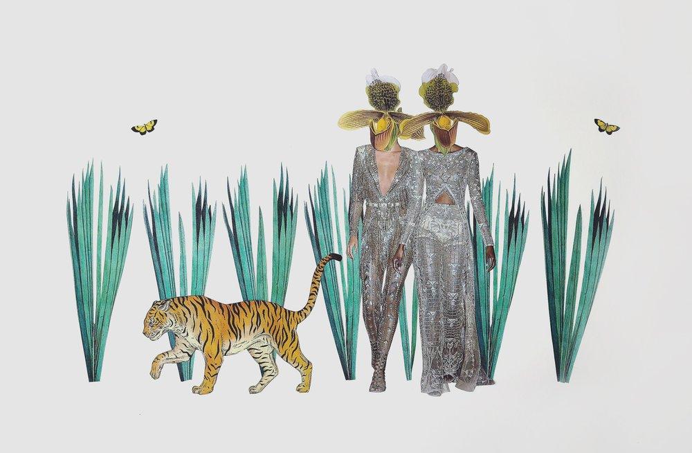 Tiger&OrchidsLargewebedit.JPG
