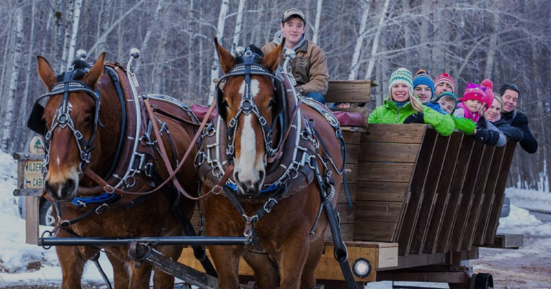 treetops_project-nature-sleigh-rides-800x420.jpg