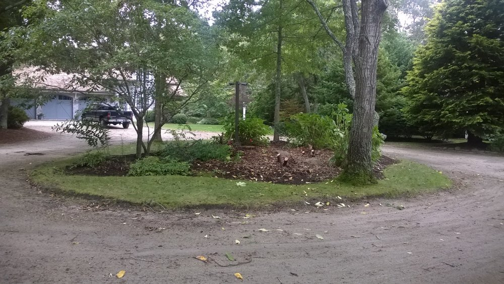 Cotuit Driveway Island Transformation (Before)