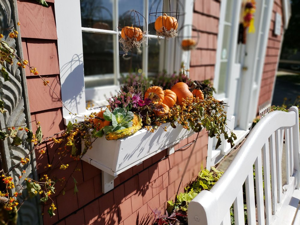 Fall Windowbox Design