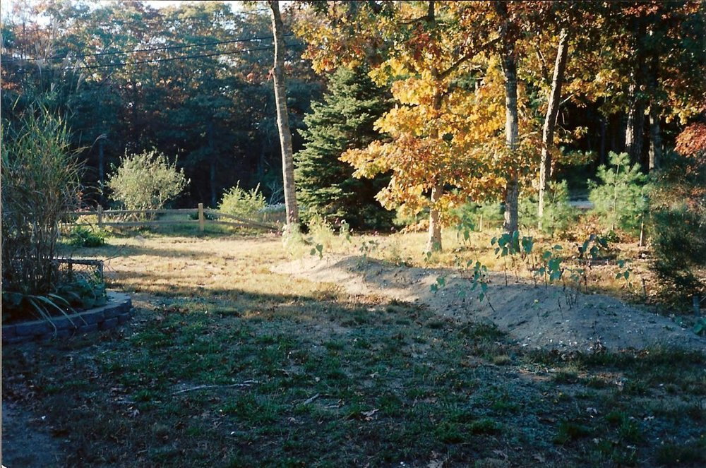 Waquoit Garden (Before)