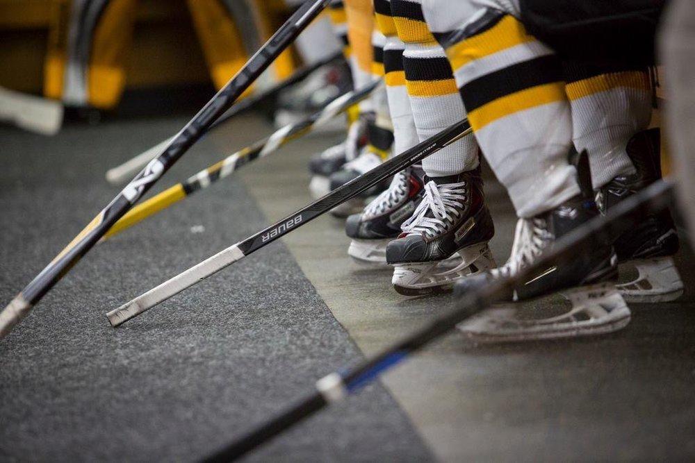 hockeyteam1.JPG