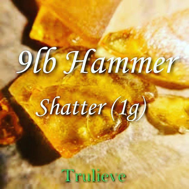 Nine Pound HAmmer Shatter   (Trulieve   )