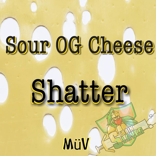Sour OG Cheese - Shatter- REview -  AltMed (MUV)