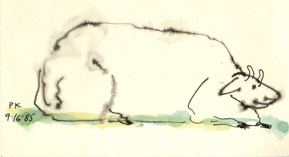Animals #16