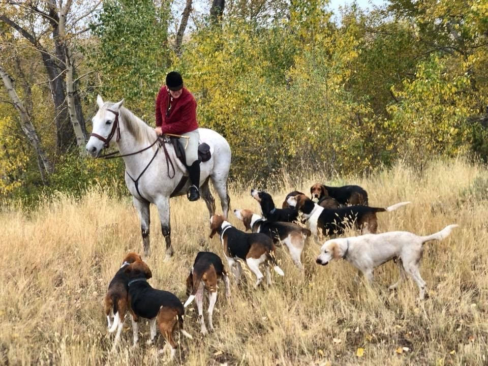 Hound walk with the Big Sky Hounds