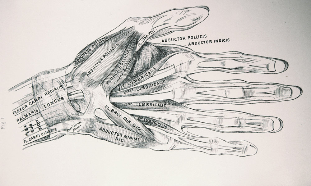 Vintage hand drawing - edited.jpg