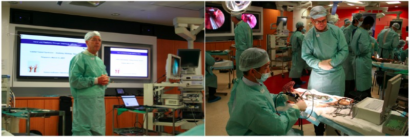 Dr. Hoffman speaking on Endoscopic Cubital Tunnel Release and Dr. Bleuler teaching the practical sessions.