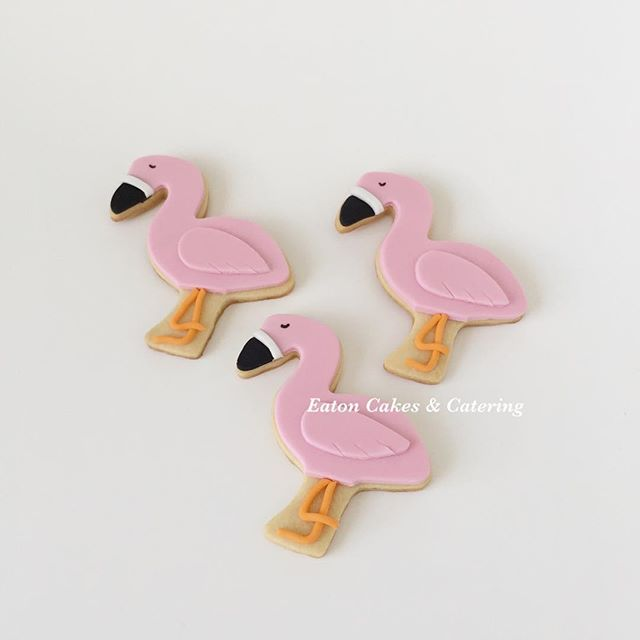 Flamingo cookies to match Jessica's watercolour cake for her 10th birthday celebration  #eatoncakes #cupcakes #cookies #fondantflowers #handmade #prettyinpink #flamingoparty #watercolourpainting #flamingo #cake #macarthurnsw #lovelocal