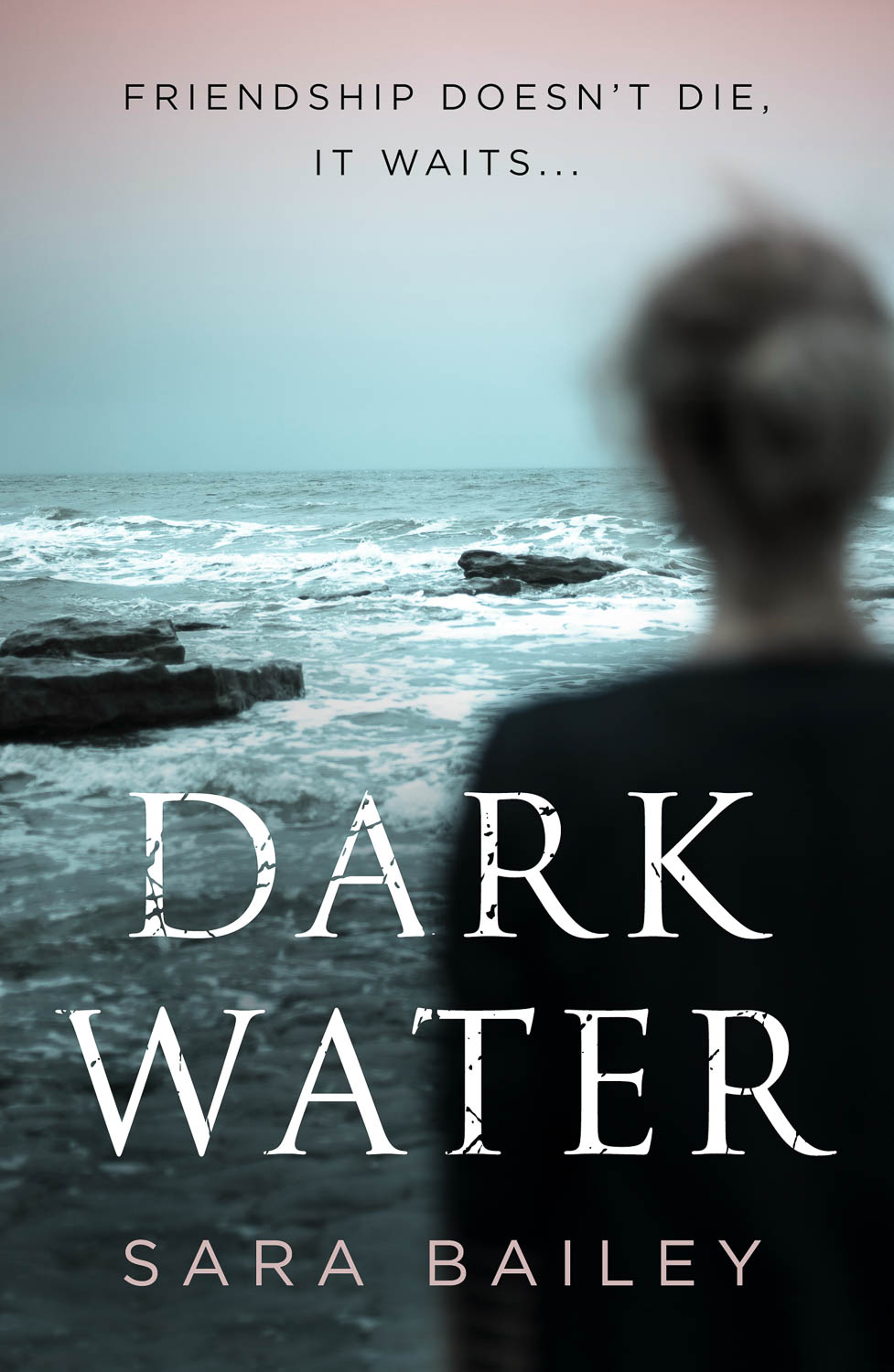 Bailey, Dark Water Book Cover Photograph by Wolf Kettler
