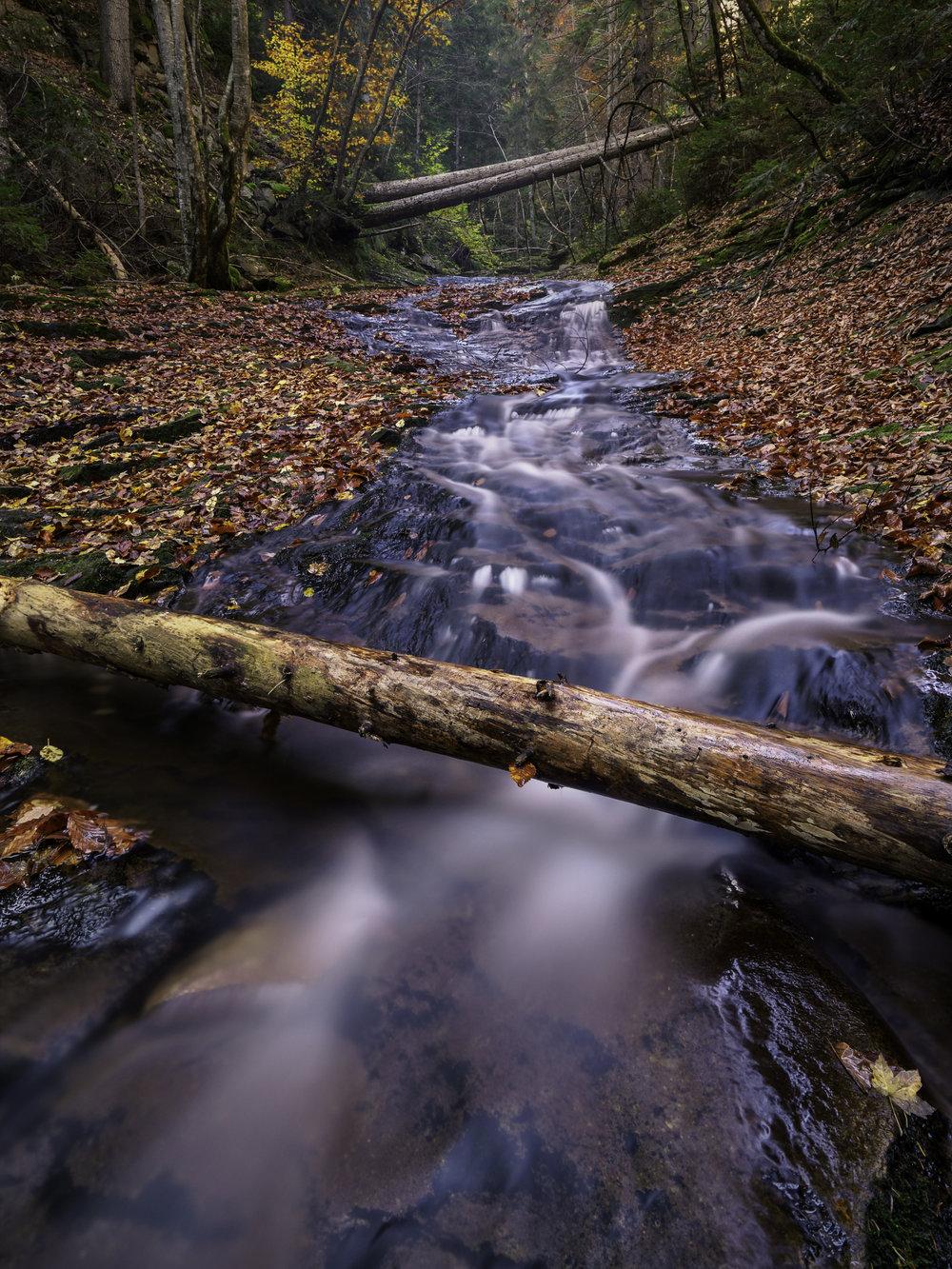 log-rhodopi-mountain-stream-fall-colours-autumn-leaves-canyonof waterfalls-colours-phototour-bulgaria-daniel-2018-portrait-Ver-2(Print).jpg