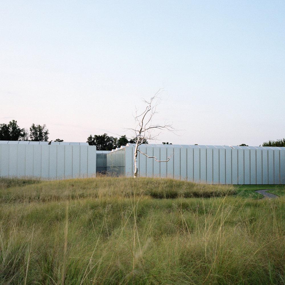 chrometree.jpg