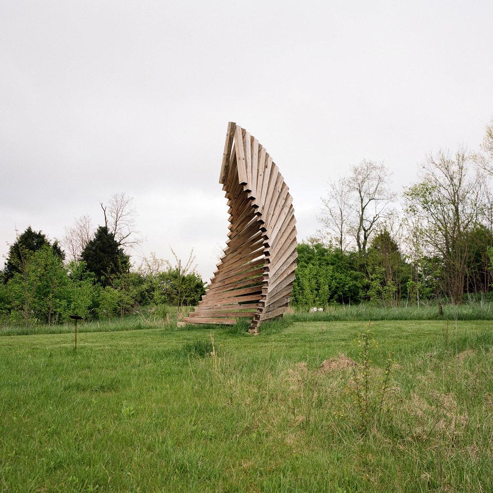 woodspiral.jpg