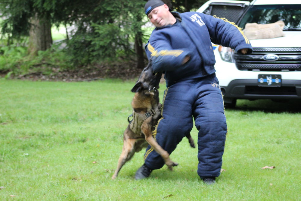 K9 Demo - by Johnstown Police Dept.