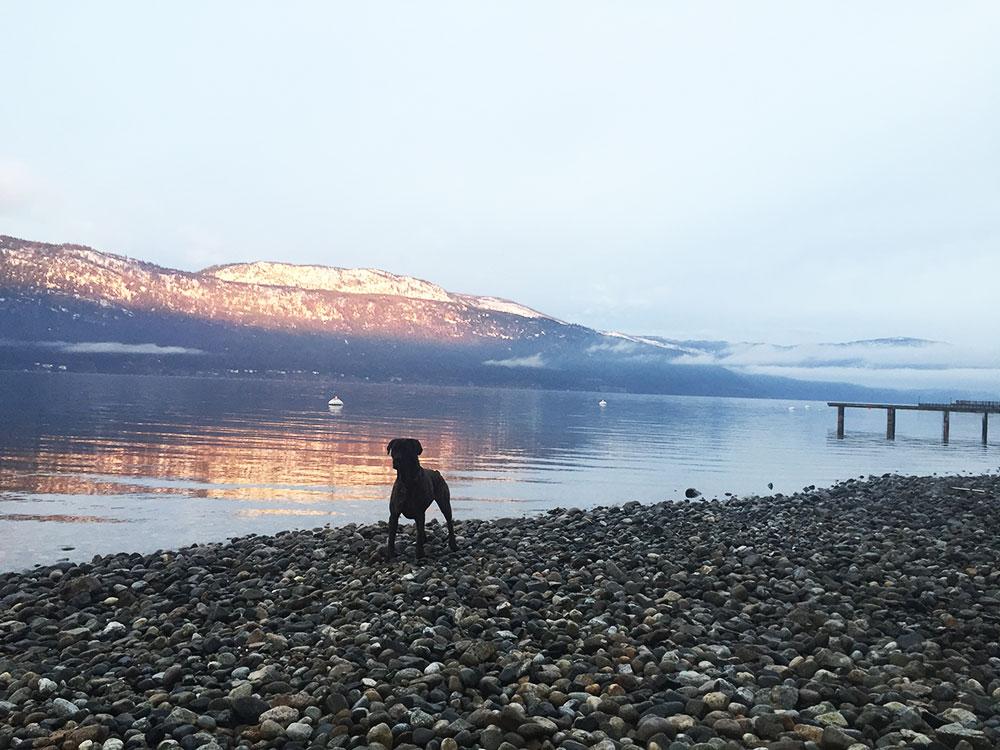 Lake-run
