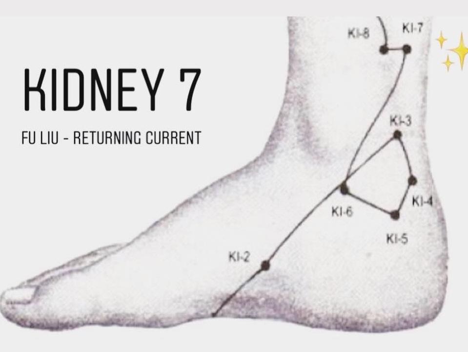 Kidney7.jpg