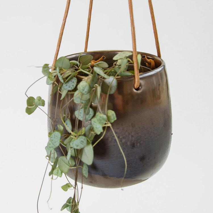 STRING OF HEARTS IN COPPER HANGING PLANTER FROM    SUCCULENCE     The ultimate Valentine's plant, String of Hearts, complimented perfectly by this copper hanging planter. This is an easy to care for plant that propagates readily, making it an ideal gift for any plant lover. There's limited availability so get in quick!    £30    Available    here