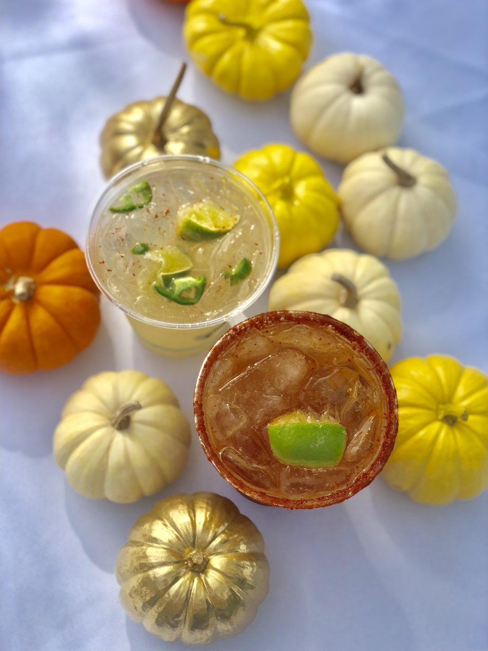 drinks and pumpkins.jpg