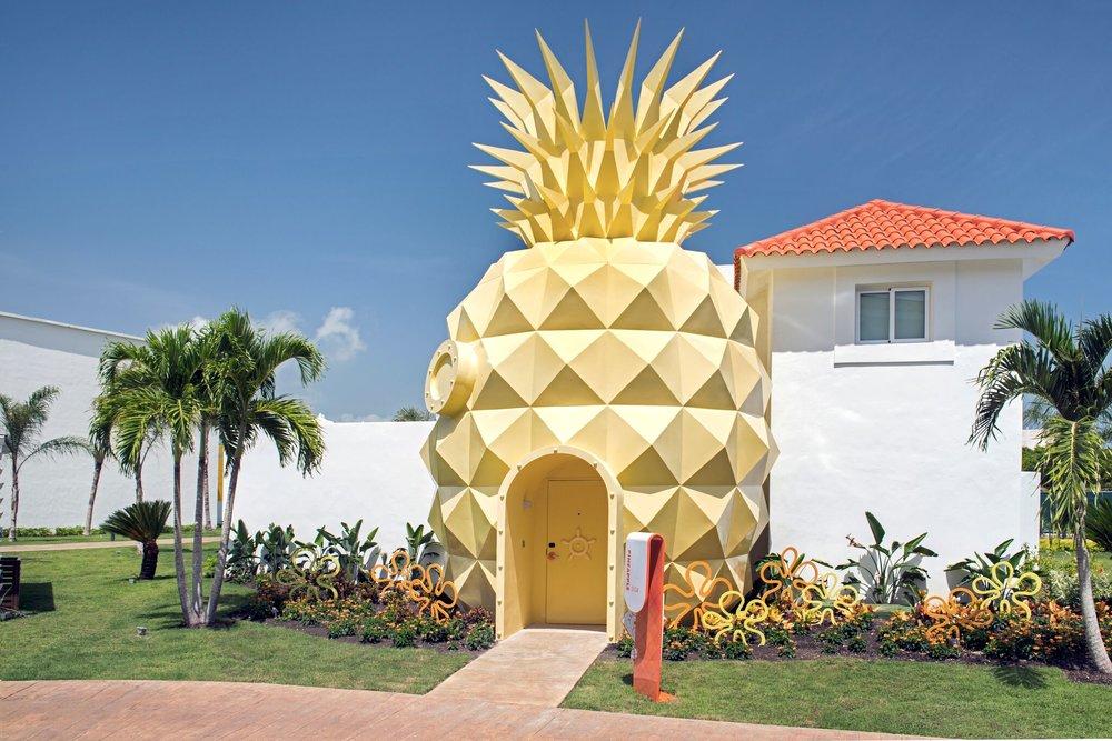 Pineapple_NHPC_.jpg