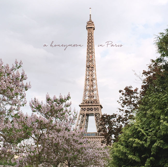 paris_honeymoon_title.jpg