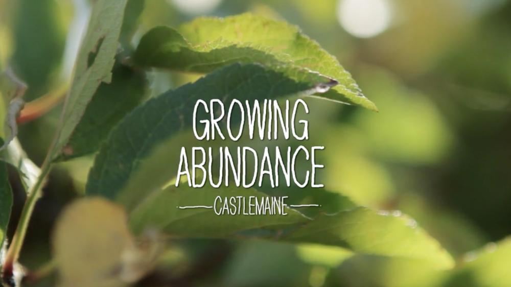 "Sustainability Victoria ""Growing Abundance"""