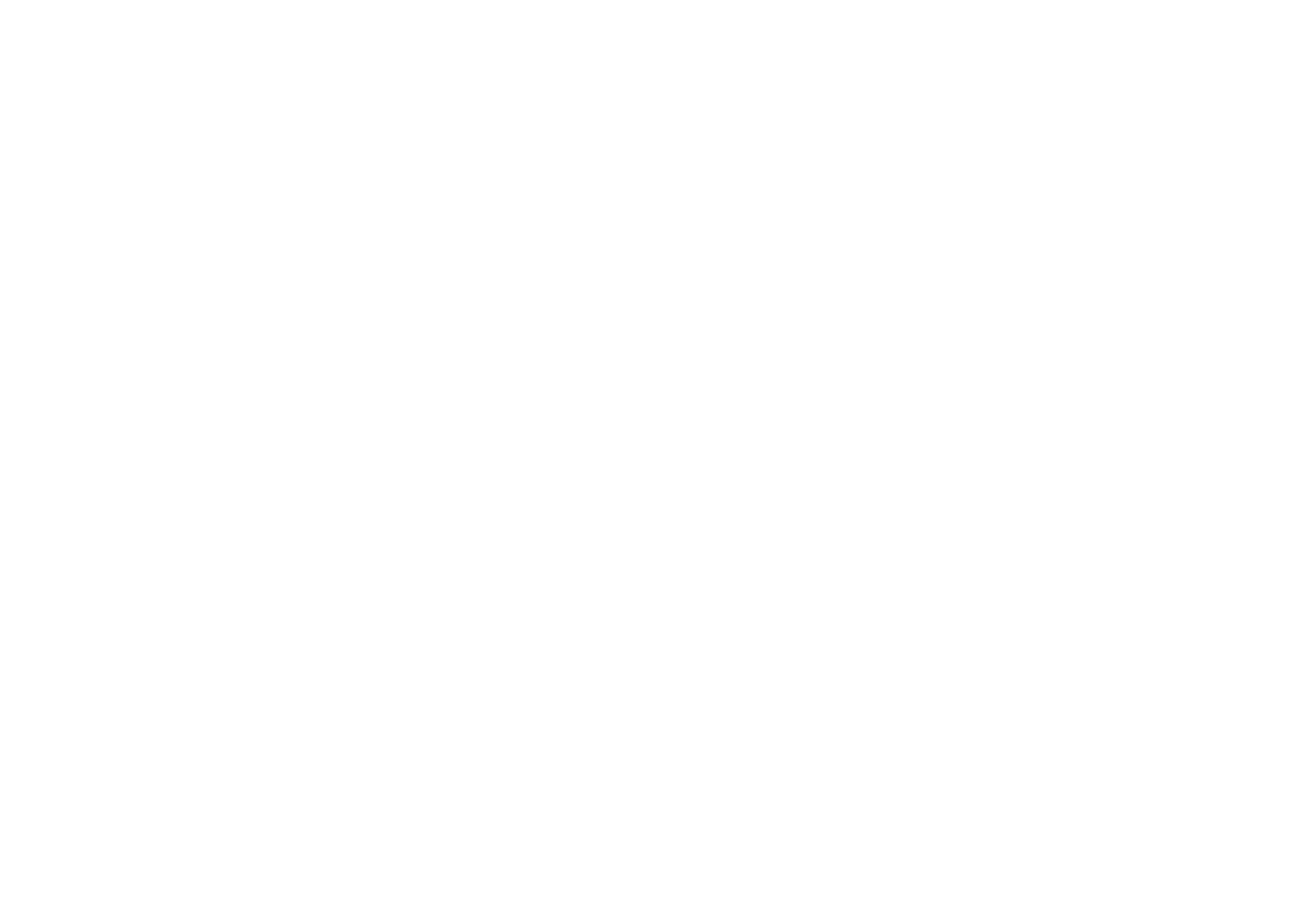 Made In New York Pizza