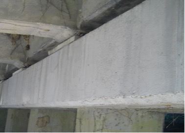 Figure 5: CeramycShield™ applied over repair mortar and structural concrete of Pier Cap (photo taken 24 hours after application)