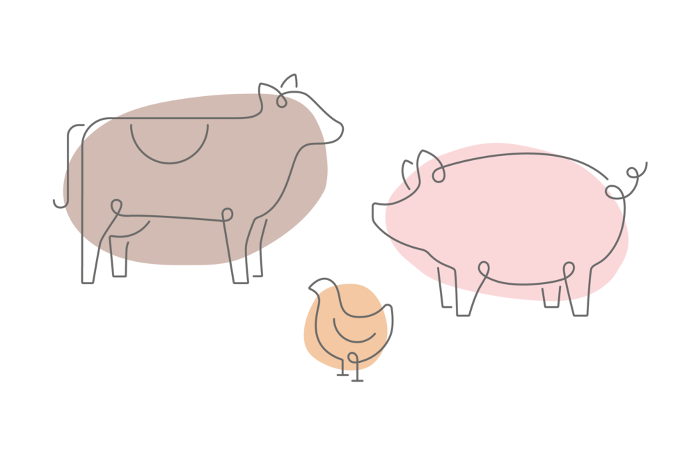 Holmefield_brand_illustrations.png