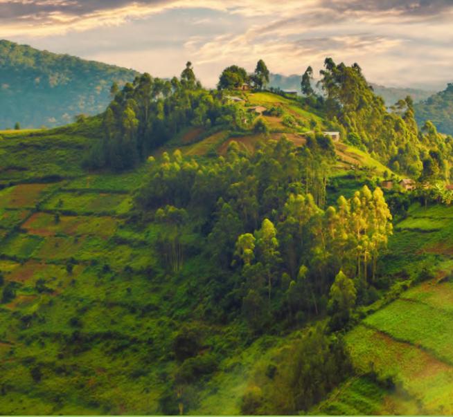 RwandaHills.jpg