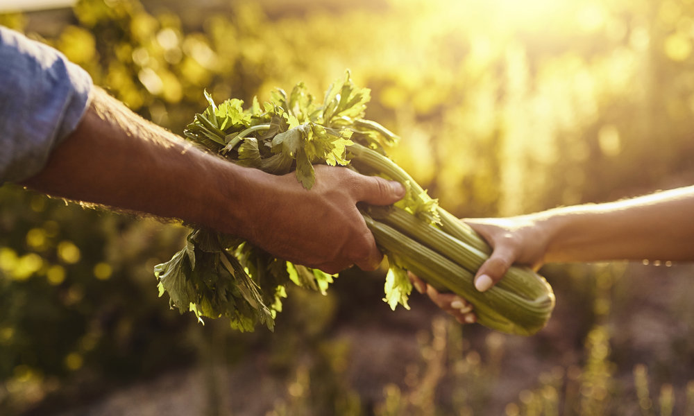 About Agricole - Our History, Our People