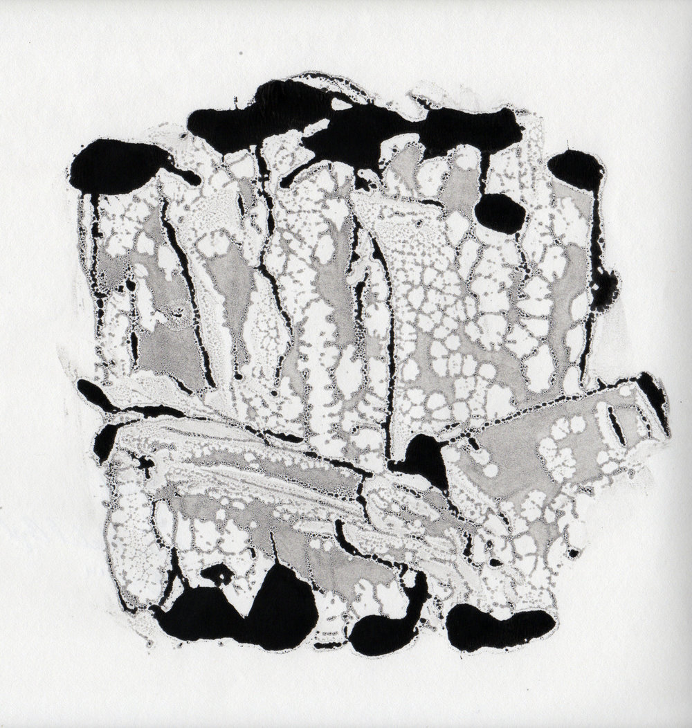 Reef 2, 2014, gelatin monotype, 10x9 inches