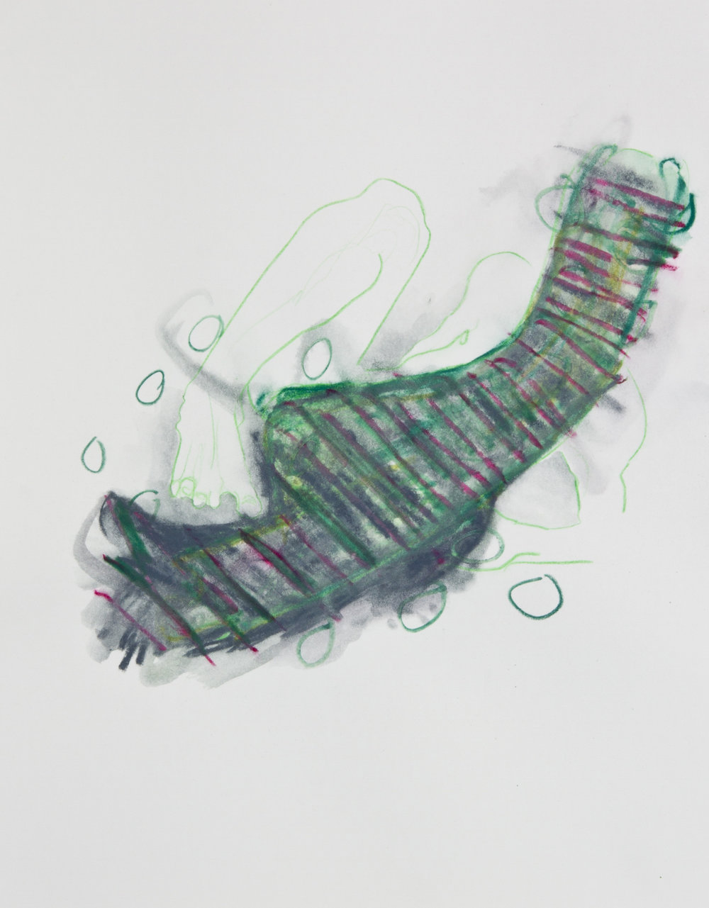 Swamp Ash, 2013, graphite, crayon and watercolor pencil on paper, 11x14 inches