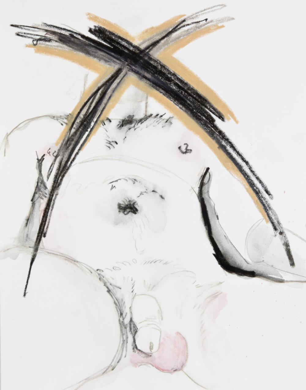 X Marks It, 2013, graphite, crayon and watercolor pencil on paper, 11x14 inches