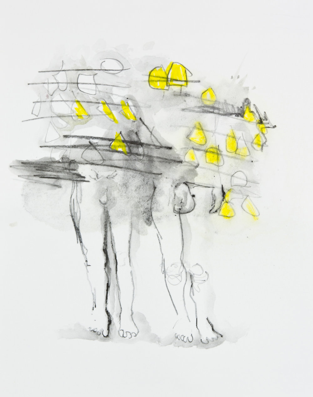 Yellow Creeping Around And In, 2013, graphite, crayon and watercolor pencil on paper, 11x14 inches