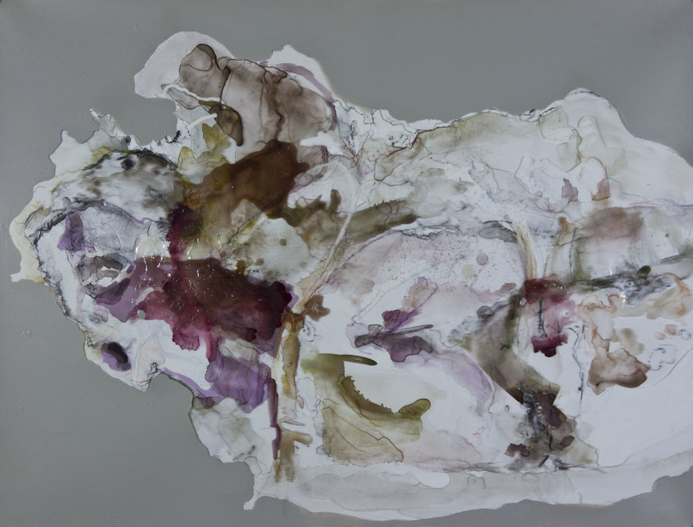 Born to Blossom, Bloom to Perish, 2012, watercolor and acrylic on mylar, 30x40 inches