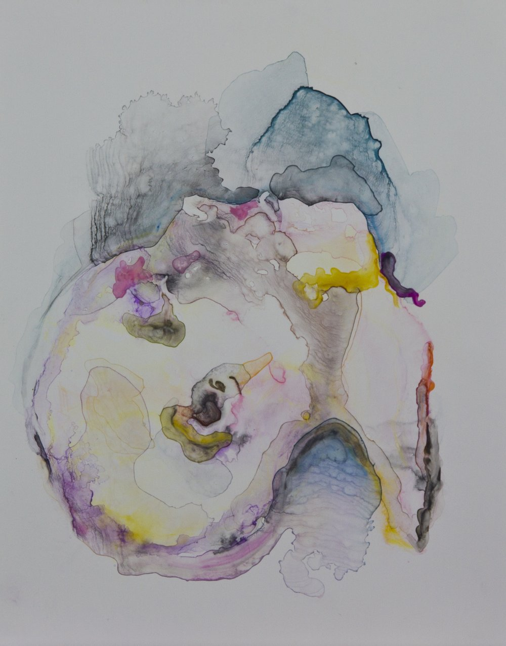 Specimen 3, 2011, watercolor on polypropylene, 11x14 inches