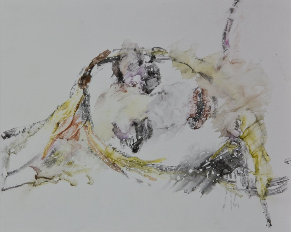 Acts 10, 2010, watercolor monotype on polypropylene, 11x14 inches