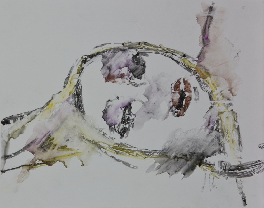 Acts 11, 2010, watercolor monotype on polypropylene, 11x14 inches