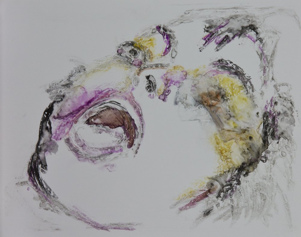 Acts 39, 2010, watercolor monotype on polypropylene, 11x14 inches