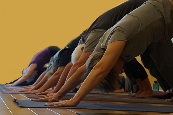 Mindful Yoga Therapy for veterans at Newington Yoga Center