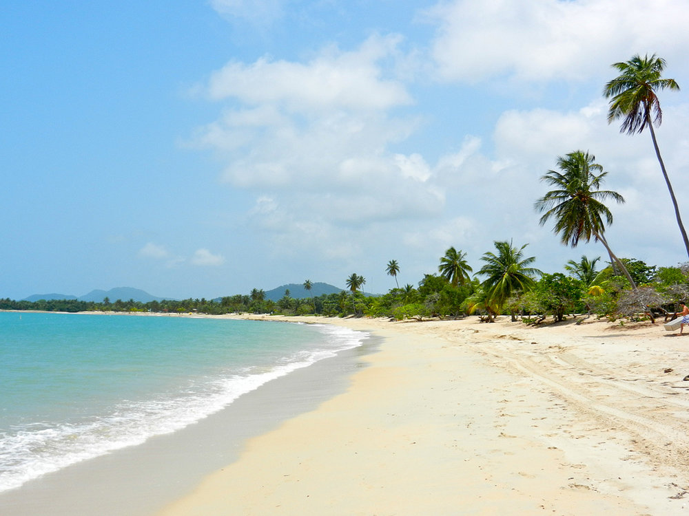 A long, gorgeous bay facing the Caribbean Sea with hundreds of palm trees dancing to the wind…