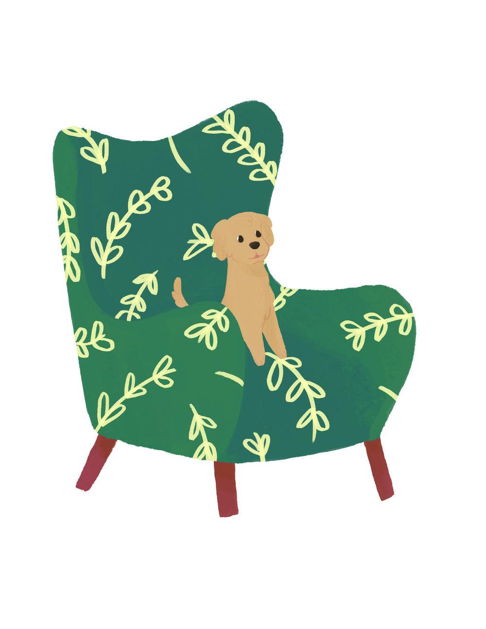 puppy in chair.jpg